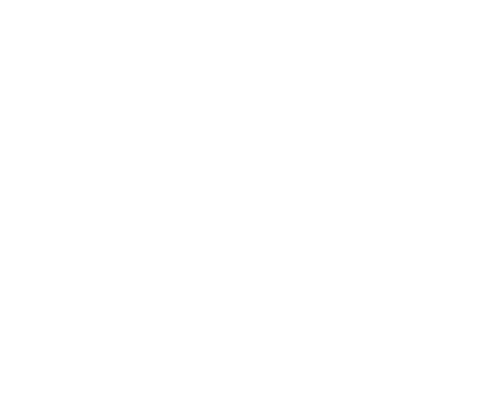 Wise Man Brewing Online Shop