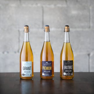 Guest Cider