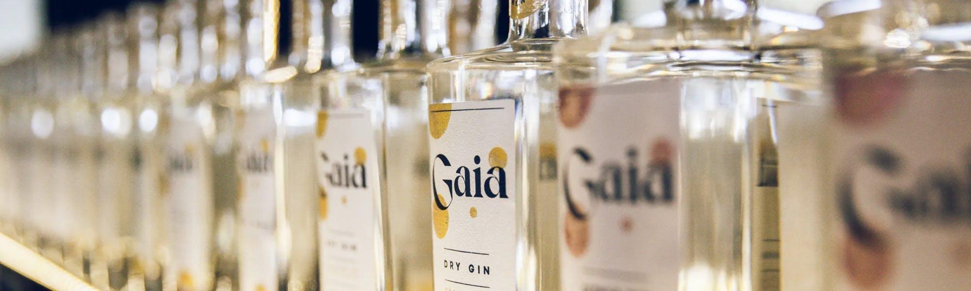 Gaia bottles lineup